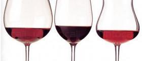 Производство и продажба на вина в Плевен