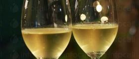 Производство на бяло вино във Варна