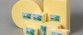 Производство на млечни продукти в Ямбол