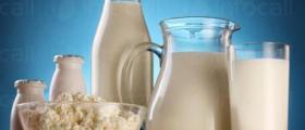 Производство на млечни продукти в Ясеновец-Разград