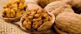 Производство на орехи в Разград