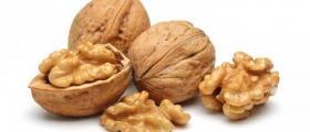 Производство на орехи в София