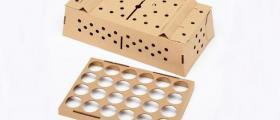 Производство на щанцови опаковки в Шумен