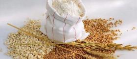 Производство ръжено брашно в Добрич