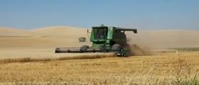 Производство селскостопанска продукция в Ореховица