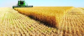 Производство селскостопанска продукция в Стражица