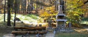 Разходка сред природата в местност Копривките-Пловдив