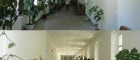 Рехабилитация белодробни заболявания в Искрец-София