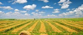Селскостопански услуги в Гарван-Ситово - ЗК 16 Декември
