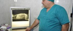 Спешна ветеринарна помощ Стара Загора - Вита Вери