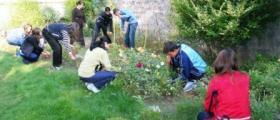 Специалност Озеленяване и цветарство