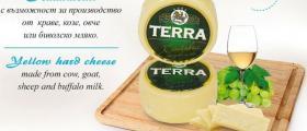 Търговия млечни продукти в Севлиево