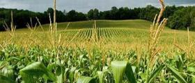 Търговия с агрохимикали в Ихтиман