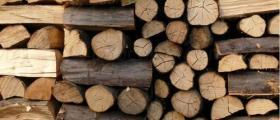 Търговия с дървен материал в Борино-Смолян