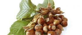 Търговия с дръвчета лешник в Казанлък