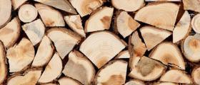 Търговия с иглолистна и широколистна дървесина Чирпан - БИ ЛЕС