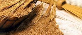Търговия със селскостопанска продукция Каменец-Пордим