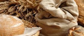 Търговия със зърно в Каварна