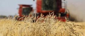 Търговия селскостопанска продукция в Екзарх Антимово-Карнобат