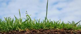 Цени за изпитване и анализ подобрители на почви в Пловдив