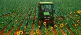 Земеделски услуги в Орловец-Полски Тръмбеш