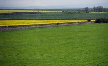 Арендуване земеделска земя в Хърлец-Козлодуй