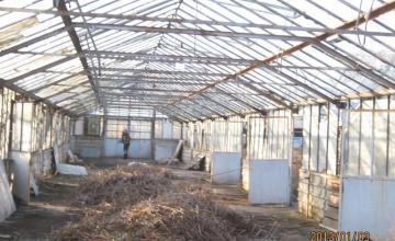 Безразрушителни георадарни проучвания в София и Петрич