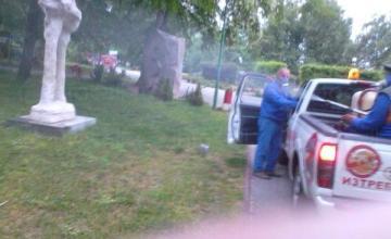 Дератизация в област Пазарджик
