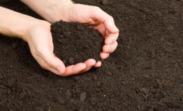 Доставка на хумусна почва в София-Младосту
