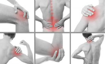 Физикална терапия (физиотерапия) - СБПЛР Любимец ЕООД