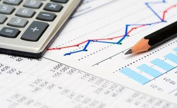 Годишни финансови отчети в Русе - Хес - 2008
