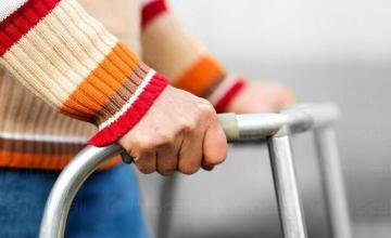 Избор подходяща трудотерапия за възрастни хора с умствена изостаналост в община Средец - ДВУИ Факия
