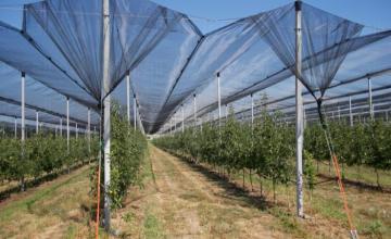 Изграждане системи против градушка и слънце в Бургас - Мибу 17