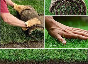 Изграждане зелени площи в Бургас