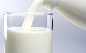 Изкупуване на мляко в област Бургас