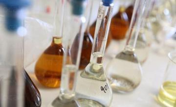 Изследвания в областта на пивото и напитките в София-Хладилника - Институт по криобиология и хранителни технологии