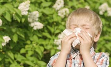 Лечение алергии в Пловдив - Доктор Даринка Димова