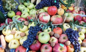 Лечение с плодове във Варна - Клиника Д-р Емилова