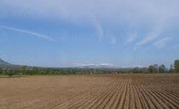 Обработка на земя в община Добрич