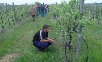 Обучение по Механизация на селското стопанство - ПГССИ Христо Ботев Свиленград
