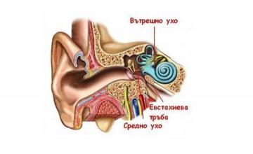 Операции на тумори на ушите в Пловдив