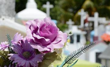 Организиране на погребения в Хасково и Димитровград - Вечен Рай