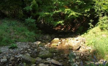 Отдих в планината в Шипково-Троян