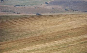 Покупко-продажба на земеделска земя в Пловдивска област - Геопрециз ЕООД