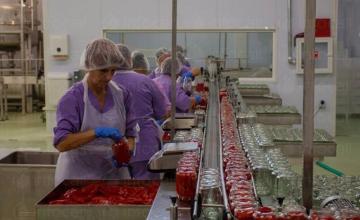 Преработка на плодове и зеленчуци Добрич - Агропакт ЕООД