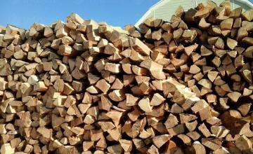 Продажба дърва за огрев Чирпан