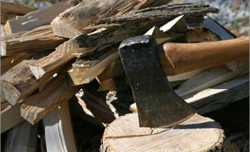 Продажба дърва за огрев в Плевен - Ракита - Братя Райнови  ООД
