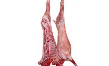 Продажба на агнешко месо в Нова Загора