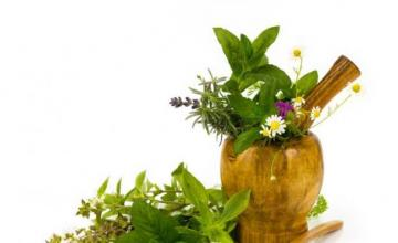 Продажба на билки и билкови продукти в Пловдив - Аптека Найденови