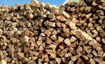Продажба на дърва за огрев в Дупница - Коб 08